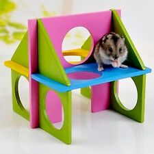 Funny Toy Mouse Rat Hamster Wooden Natural Gym Playground Exercise Colorful New.