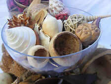 Pot Pourri Luxury Kit 450 gr bag & 8 Shell & Large nut & 2 Tubs Pink/Green Flake
