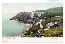 Marine Drive - Llandudno Photo Postcard c1905