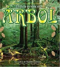 El Ciclo De Vida Del Arbol  Life Cycle of a Tree (Ciclo De Vida  the Life Cycle)
