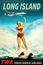 Poconos Pennsylvania Snow Ski Travel Poster Brittany Spaniel PinUp Art Print 328