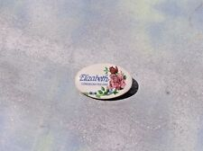 Hand Painted Free Shipping! Porcelain Elizabeth Collar Pin