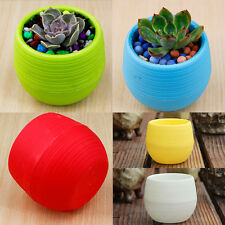 5pc/set colorful Plastic Plant Garden Succulents Pot Vase Flower Container Boxes