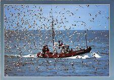 BF37386 retour de peche a la sardine france  Boat Ship Bateaux