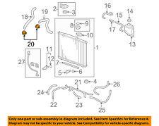 HONDA OEM Radiator-Lower Hose Clamp 19511PH7003