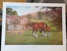 "Large Art Print Poster Ronald D Beaton ""Only Foals and Horses"" 27 inches by 20 """