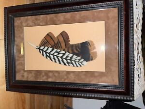 National Wild Turkey Federation framed carved and painted turkey feathers