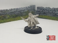 Frodo Emyn Muil Metal Fellowship LotR Middle Earth Lord Rings GW Hobbit