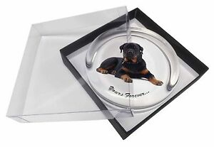 Rotweiler Dog 'Yours Forever' Glass Paperweight in Gift Box Christmas , AD-RW5PW