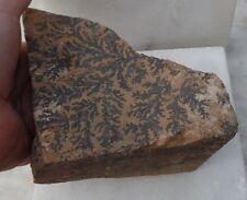 Australian Manganese rough multiple dendrites  lapidary mineral specimen - GB08