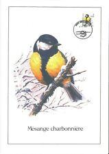 FDC 2966 - Oiseau Buzin sur gravure format A4 !
