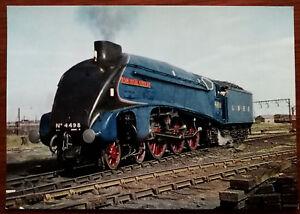 """L & N. E. R. Class A4 4-6-2 No. 4498 """"Sir Nigel Gresley"""" Train. Post Card"""