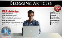800+ PLR Articles on Blogging Niche Private Label Rights