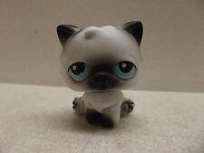 LITTLEST PET SHOP CAT KITTEN # 60 PERSIAN KITTY BLUE EYES LONG HAIR