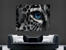 LEOPARD POSTER BLUE EYES PREDATOR CAT ANIMAL GIANT IMAGE HUGE LARGE WALL ART