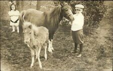 Children & Ponies Kilroy Family Yantic CT Written on Back c1910 Photo Postcard