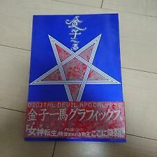 Kazuma Kaneko Graphics Goddess Reincarnation Apocalypse / Art Book Japan Limited