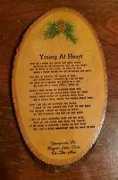 Vintage Youngsville, Pennsylvania Souvenir pine wood slice picture plaque USA