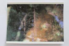 Vintage Czech Postcard Jan Simon Fiala WEDDING CEREMONY