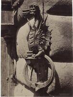 Siena Dettaglio Di Architettura Italia Fotografia Vintage Albumina c1880