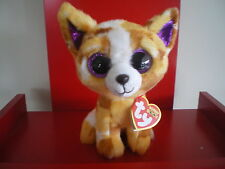 Ty Beanie Boos PABLO THE CHIHUAHUA dog 6 inch  NWMT.  BRAND NEW JUST ARRIVED..