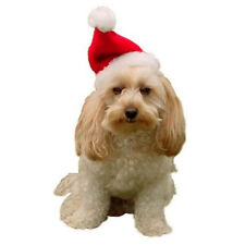 Small Dog Christmas Red & White Santa Hat