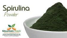 ORGANIC Spirulina in polvere BLU-VERDE alghe Superfood supplemento 25g Gratis UK POST