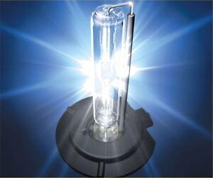 LAMPADE XENO 50 WATT RICAMBIO PER KIT XENON ALFA FIAT GOLF AUDI ATTACCO H7