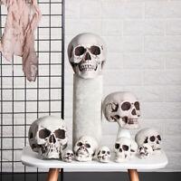 de fête Home Decoration Objet de jeu Halloween Pendentif Squelette Crâne
