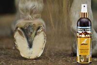 Strahlpfelge - Hufpflege - Strahlfäule am Huf - Hufpflege | 500 ml