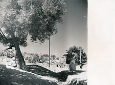 FEZ c. 1950 - Bab Bou-Yeloud Maroc - M50