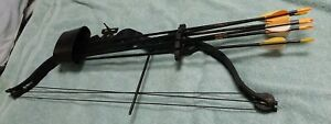 FRED BEAR BRAVE 2 COMPOUND BOW W/QUIVER AND 6 ARROWS/GOOD CONDITION