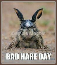"Rabbit Bad Hare Day Funny Fridge Magnet 3.75"" x 3.25"""