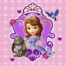 PRINCESS SOFIA THE FIRST birthday party beverage PAPER NAPKINS  supplies 16pc