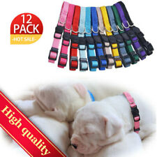12Pack Nylon Puppy Id Color Breakable Pet Puppy Whelping Collars Set Adjustable