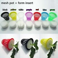 "10X Mesh Pot Net Basket Clone Cloning Collar Foam Insert Hydroponic Aeroponic 2"""
