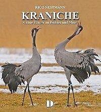 Bildband Kraniche - Rico Nestmann - 9783944102146 PORTOFREI