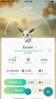 Pokémon Go Trade Shiny Eevee (Registered or Unregistered)