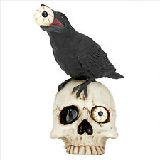 Skull Head Statue Raven Bird Statuary Halloween Props Medieval Gothic Decor Art