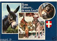 Fantasía - TARJETA POSTAL- - Postal-pequeños burros (H5381)