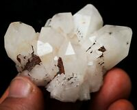RARE Natural Hollandite Star Quartz CRYSTAL Cluster Point&Trapiche Hair