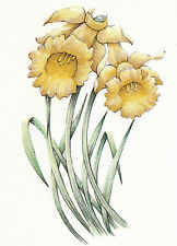 Ceramic Decals Yellow Daffodil Floral Flower Stem