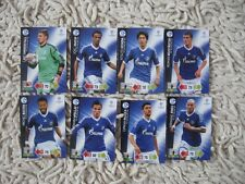 PANINI ADRENALYN XL CHAMPIONS LEAGUE 2012/13  SCHALKE complete set update