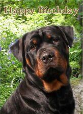 Rottweiler Dog Design A6 Textured Birthday Card BDROTTI-2 by paws2print