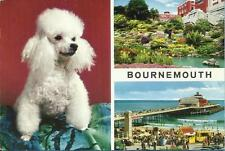 John Hinde Ltd Posted Collectable Dorset Postcards