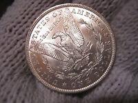 Gem brilliant Uncirculated Morgan Silver Dollar No Res.