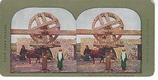 Persian Water Wheel, Plain of Esdraelon, Vintage Color Stereoview