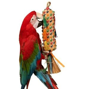 Palm Leaf Coloured Spiked Pinata Natural Parrot Toy - Large