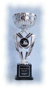 FANTASY BASEBALL SILVER CUP FFL INDIVIDUAL AWARD SUPER COOL AWARD TROPHY J**5 ~