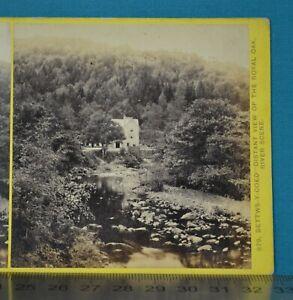 1860s Stereoview Photo N. Wales Illustrated Bettws-Y-Coed Royal Oak F. Bedford